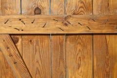 Drewniany door_1 Zdjęcia Stock