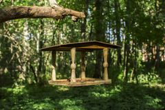 Drewniany dozownik w lesie przeciw tłu zieleni drzewa obrazy royalty free