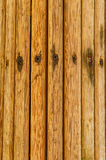 Drewniany drzewka palmowego tło Fotografia Royalty Free