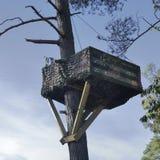 Drewniany drzewny dom w drzewie Zdjęcia Royalty Free