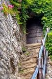 Drewniany drzwi na kamiennych schodkach Zdjęcia Royalty Free