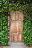 Drewniany drzwi z zielonymi liśćmi Obrazy Stock