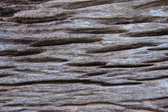 Drewniany fiszorka tło Fotografia Royalty Free
