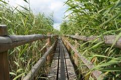 Drewniany Footbridge Obraz Stock