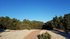 Drewniany footbridge morze Obrazy Royalty Free