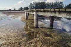 Drewniany footbridge przy jeziorem fotografia royalty free