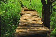 Drewniany footbridge w cieniu drzewa Obrazy Royalty Free