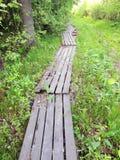 Drewniany Footbridge w lesie Zdjęcie Stock