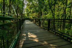 Drewniany footbridge w parku Obraz Royalty Free