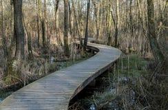 Drewniany footpath Zdjęcie Royalty Free