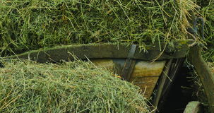 Drewniany fracht z sianem drewniane fury z suchą trawą Bele siano Drewniany koło dawność zbiory