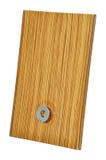 drewniany gabinetowy drzwi Obraz Stock