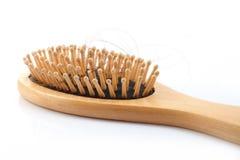 Drewniany grępli muśnięcie z przegranym włosy Zdjęcie Stock