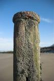 drewniany groyne morze zdjęcie stock