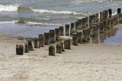 Drewniany groyne przy morzem fotografia stock