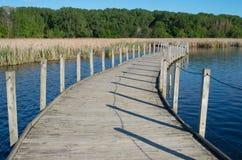 Drewniany Jeziorny Boardwalk i bagna Obrazy Royalty Free