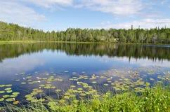 Drewniany jezioro Zdjęcie Royalty Free