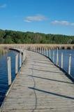 Drewniany jezioro parka Boardwalk Przez bagno Zdjęcia Stock