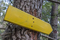 Drewniany kierunkowy znak na drzewie Obraz Stock