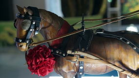 Drewniany koń i fracht zdjęcie wideo