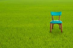Drewniany krzesło na Zielonej trawie obraz royalty free