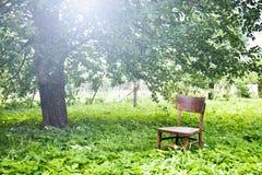 Drewniany krzesło Zdjęcie Stock