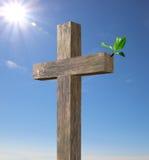 Drewniany krzyż z zieloną gałąź obraz stock
