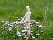 Drewniany mannequin między kwiatami na wiosna czasu ekologii i ogródu pojęciem Fotografia Stock