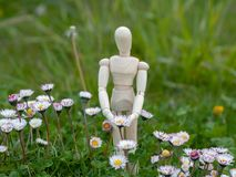 Drewniany mannequin między kwiatami na wiosny ekologii i ogródu pojęciem Zdjęcia Royalty Free