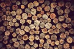 Drewniany materialny tło zdjęcie stock