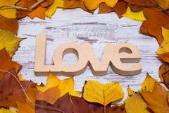 Drewniany miłość znak na podławym białym drewnianym tle z żółtymi liśćmi, jesień pojęcia odosobniony biel Odgórny widok Obraz Stock