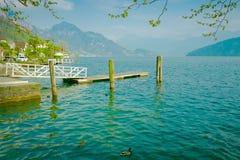 Drewniany molo na jeziornej lucernie w Szwajcaria Obraz Stock