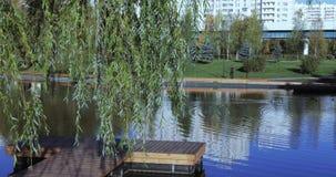 Drewniany molo na stawie zbiory