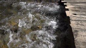 Drewniany most i rzeka zdjęcie wideo