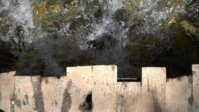 Drewniany most i rzeka zbiory wideo