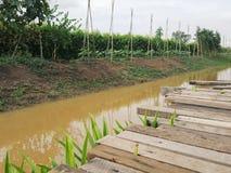 Drewniany most jest wraz z lokalną ziemią rolnicze rośliny i rzeką Obraz Stock