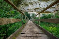 Drewniany most nad rzeką w czarnym lesie fotografia stock