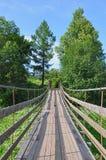 Drewniany most wśród natury Obrazy Royalty Free