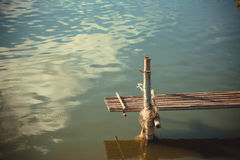 Drewniany most w rybiego gospodarstwa rolnego basenie Fotografia Royalty Free
