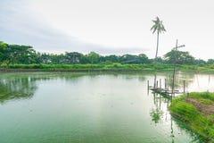 Drewniany most w rybiego gospodarstwa rolnego basenie Zdjęcie Royalty Free