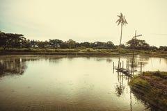 Drewniany most w rybiego gospodarstwa rolnego basenie Zdjęcia Royalty Free