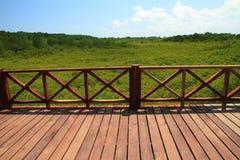 Drewniany most w zielonej namorzynowej natury plenerowym krajobrazie Obrazy Stock