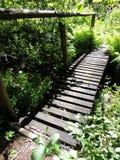 Drewniany most z poręczem Obraz Royalty Free