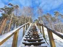 Drewniany na piętrze iść na wzgórze wierzchołku, Lithuania obraz royalty free