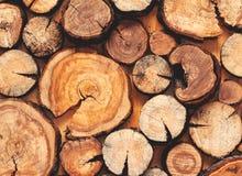 Drewniany naturalny cięcie notuje textured tło, odgórny widok obraz stock