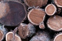 Drewniany naturalny piłujący beli zbliżenie dla tła lub abstrakcji, mody mieszkania nieatutowa fotografia zdjęcia stock