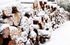 Drewniany notuje dalej zima śnieg, lasowy tło fotografia stock