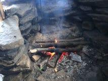 Drewniany ogień zdjęcie wideo