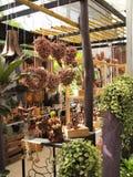 Drewniany ogród Obraz Stock