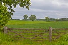 Drewniany ogrodzenie gdzieś w Anglia fotografia stock